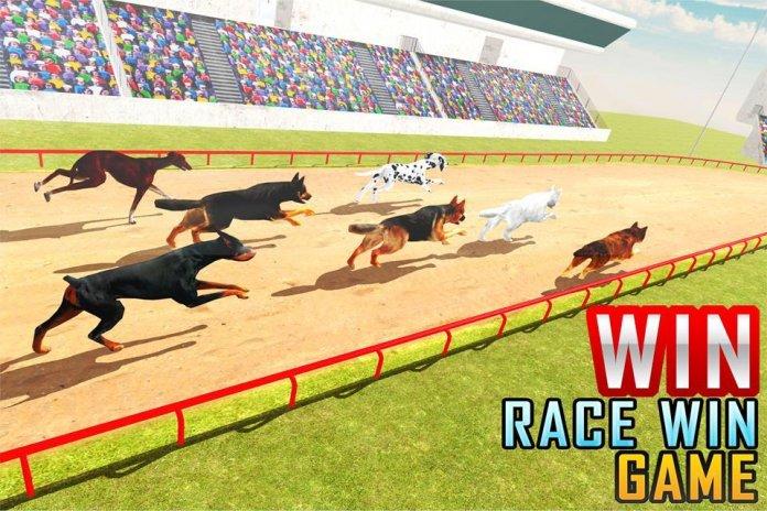 Dog Racing Stunt & Jump 3D Sim 1 0 APK دانلود برای اندروید