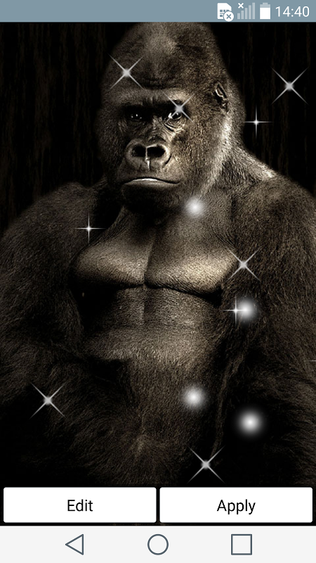 k nig gorilla hintergr nde 1 0 laden sie apk f r android herunter rh king gorilla live wallpaper de aptoide com