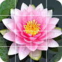 Tile Puzzle: beautiful flowers