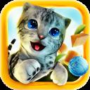 Simulador de Gatos