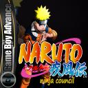 Naruto Ninja Council
