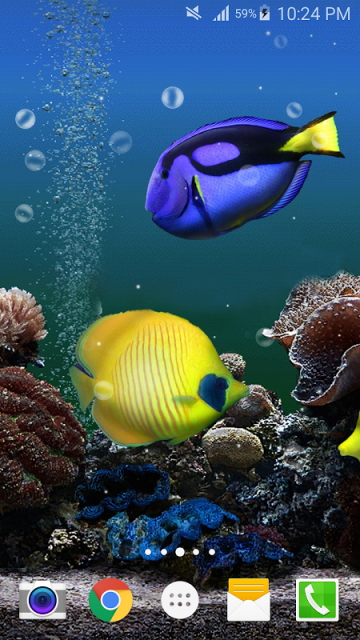 Ocean Fish Live Wallpaper Free Download Apk For Android