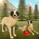 Dog Life: Animal Simulator Game