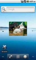 Image search & show Widget Screenshot
