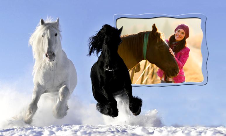 Marcos de la foto del caballo 1.8 Descargar APK para Android - Aptoide