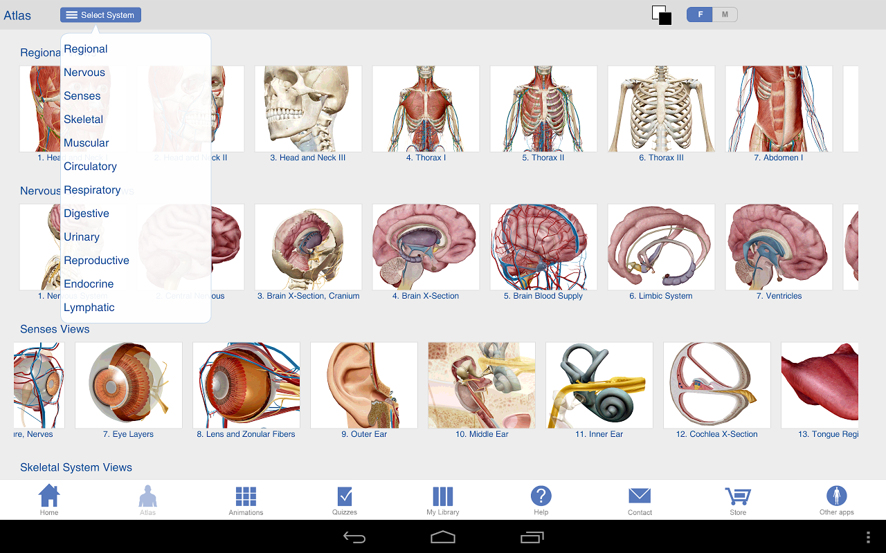 Human Anatomy Atlas SP screenshot 2