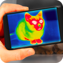 Thermal vision camera effects