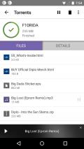 BitTorrent®- Torrent Downloads Screenshot