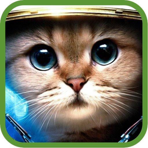 Image of: Wild Funny Animals Videos Icon 1mobile Funny Animals Videos 10 Download Apk For Android Aptoide