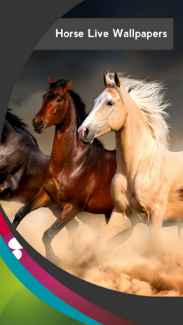Horse Live Wallpapers 1 5 Download Apk For Android Aptoide