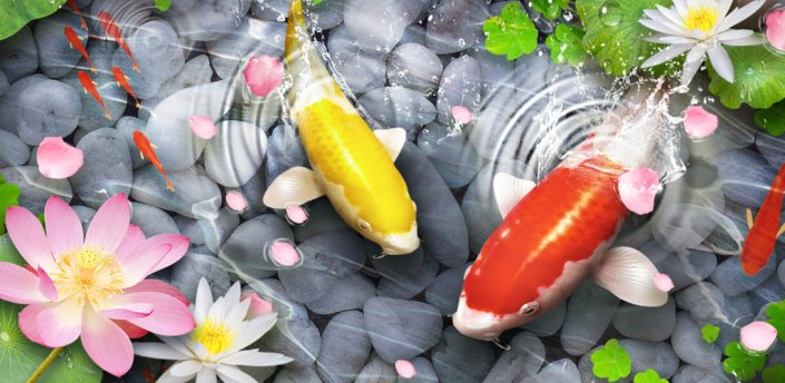 Unduh 57+ Wallpaper Animasi Ikan Koi Gratis Terbaik