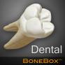 bonebox dental lite icon