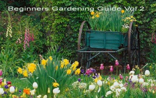 Beginners Gardening Guide Vol2 screenshot 1