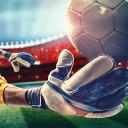 Real Football Champions 14