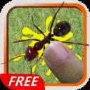 Smash And Kill Ants Bugs Free