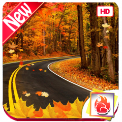 Beautiful Autumn Wallpapers Autumn Backgrounds Hd 2015