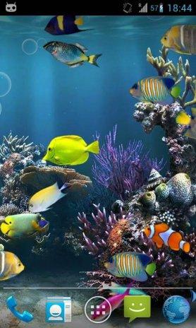 Fish Aquarium Live Wallpaper Screenshot 4