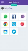Data Manager Screenshot