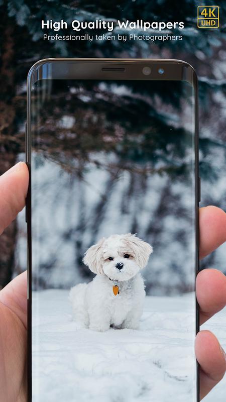 Puppy Wallpapers 4K PRO Puppy Backgrounds screenshot 2