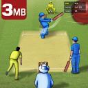 Cricket Championship 2019 - 3 MB
