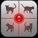 Tradutor Humano-Gato