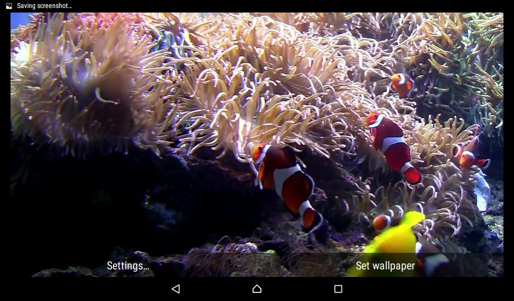 aquarium live wallpaper free download for mobile