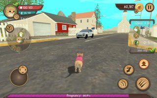 Cat Sim Online: Play with Cats Screen