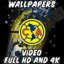 Wallpapers America