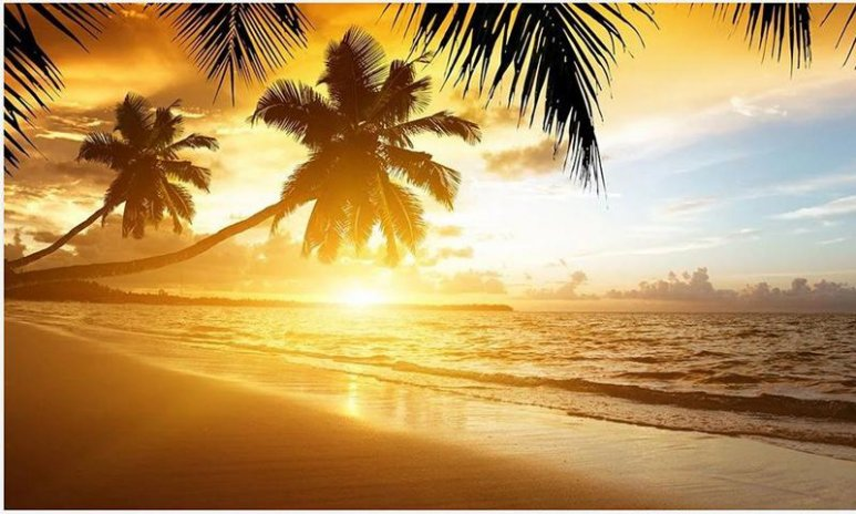 Download Kumpulan Koleksi Background Putih Sunset Gratis Terbaru