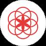 clue period tracker icon