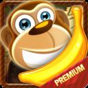 Banny Sammy - Super Cute Food Animal Puzzle