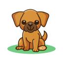 Pets Adoption: Adopt Dog, Cat or Post for Adoption