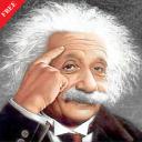 IQ Puzzle Game