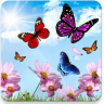 Butterfly 2 live wallpaper Icon