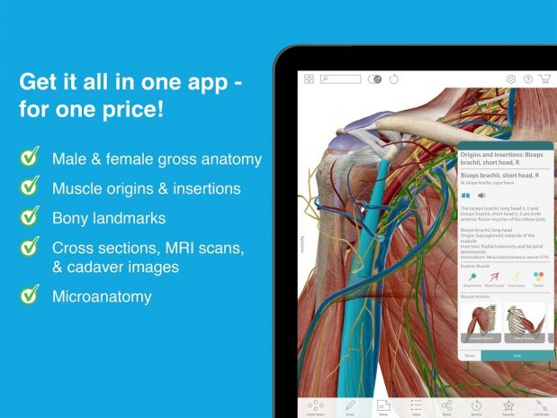 Human Anatomy Atlas 2017 2017.1.39 Download APK for Android - Aptoide