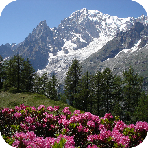 Relax Mountain ~ Nature sounds: sleep & meditation