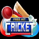 Free Hit Cricket - Free cricket game