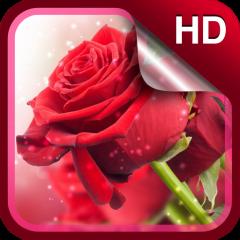 Mawar Merah Png
