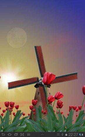 Tulip Windmill Live Wallpaper Screenshot 7