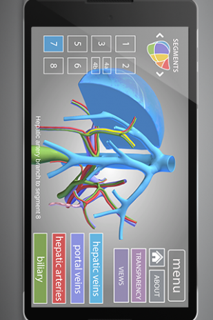 Surgical Anatomy Of The Liver 12 Download Apk For Android Aptoide