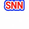 Natural Net Ikon