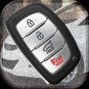 Car Key Remote