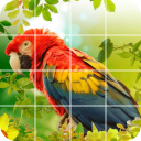 Tile Puzzle: beautiful birds