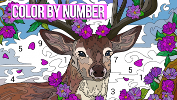 Happy Colour – Colour by Numbers Screen