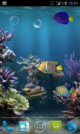Fish Aquarium Live Wallpaper Screenshot 1