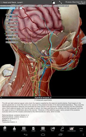 Atlas de anatomía humana 7.4.03 Descargar APK para Android - Aptoide