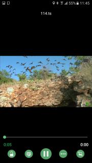 VL Video Player IPTV screenshot 1
