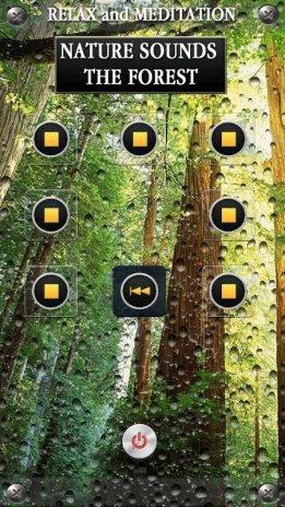 Nature Forest Sounds Relax 1 0 5 ดาวน์โหลด APKสำหรับแอนดรอยด์- Aptoide