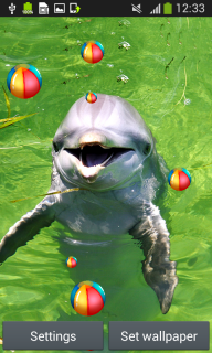 Dolphins Live Wallpapers screenshot 5