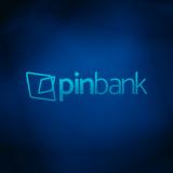 PINbank Icon